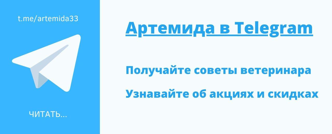 Телеграм-канал Артемиды